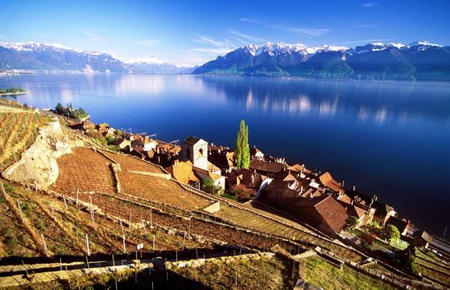 UNESCO´s Lavaux Vineyard Terraces